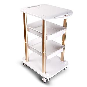 Beauty Salon Furniture Trolley Spa Styling Pedestal Rolling Cart Two Shelf Abs Aluminum Elitzia ETTRO5