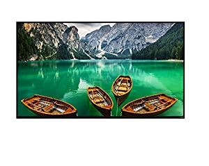 Vizio D43N-E4 43-inch 1080p Full Array LED HDTV (No Stand) (Certified Refurbished)