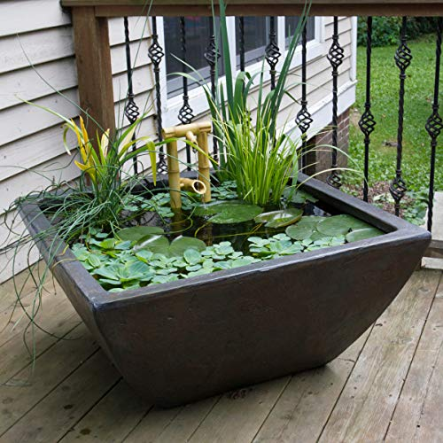 Aquascape Aquatic Patio Pond, Container Water Garden, 27-Inch Square, Gray Slate | 78050