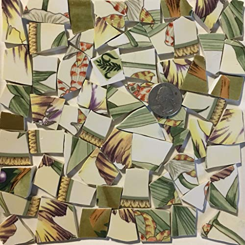Mosaic Art & Crafts Supply ~ Green & Yellow Tropical Plant Tiles (B355)