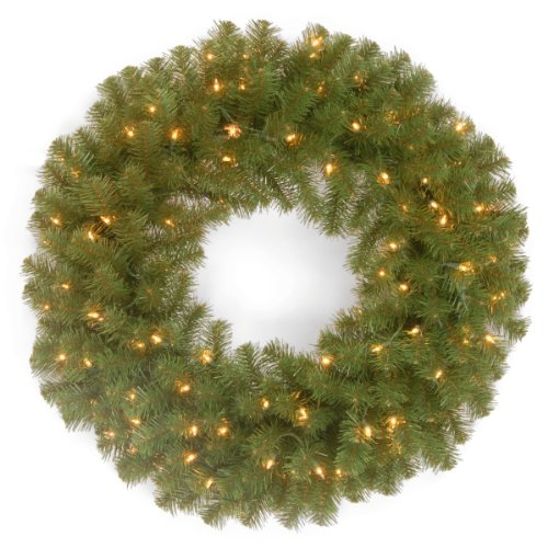 National Tree 24 Inch North Valley Spruce Wreath with 50 Clear Lights (NRV7-300-24W-1) (Light Three Clear)