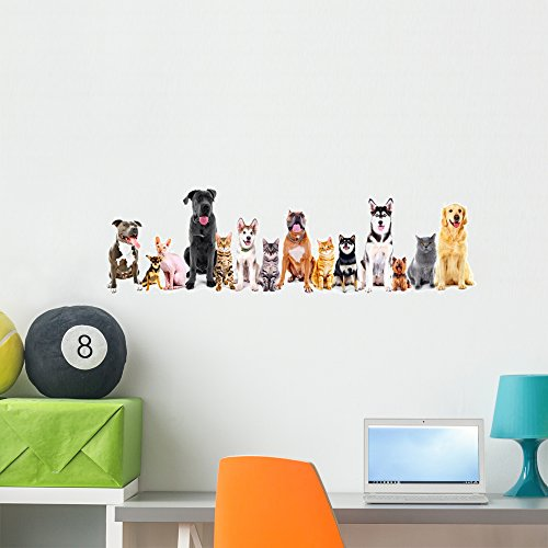 Wallmonkeys WM359544 Group of Sitting Cats and Dogs Wall Decal Peel and Stick Graphic (36 in W x 12 in H)