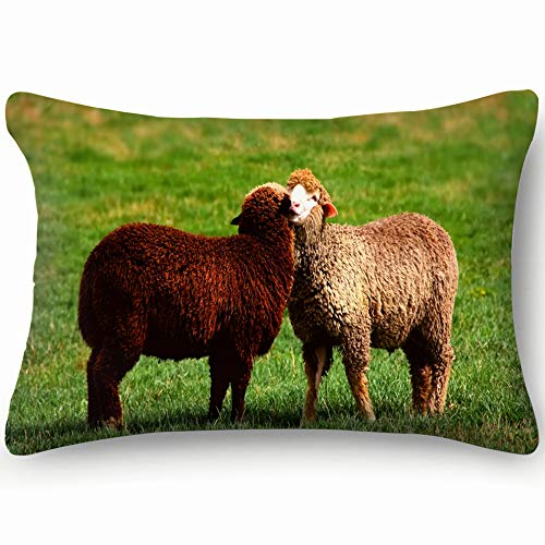 Black White Sheep Cuddle Together Love Animals Wildlife Agriculture Nature Cotton Linen Blend Decorative Throw Pillow Cover Cushion Covers Pillowcase Pillow Shams, Home Decor Decorations For Sofa - Cotton Ewe Cuddle