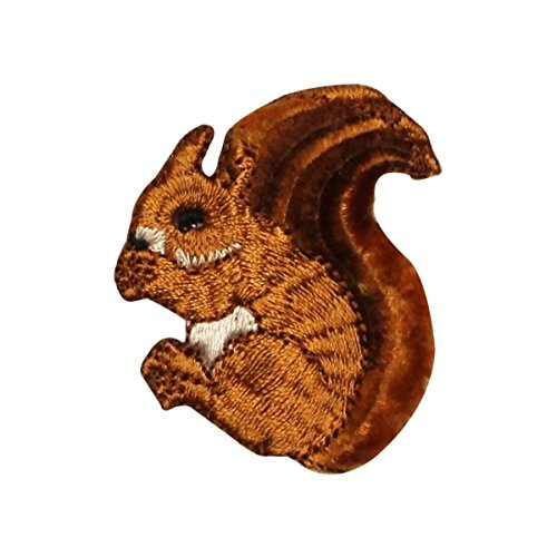 ID 0716 Fuzzy Squirrel Eating Patch Forest Chipmunk Embroidered Iron On Applique (On Iron Squirrel)