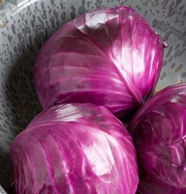 David's Garden Seeds Cabbage Ruby Perfection D1775 (Red) 100 Hybrid Seeds