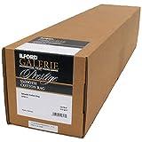 ILFORD 2004042 GALERIE Prestige Smooth Cotton Rag - 24 Inches x 49 Feet Roll