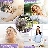 Timoo Dried Lavender Bundles 100% Natural