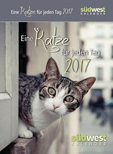 Eine Katze für jeden Tag 2017 ABK