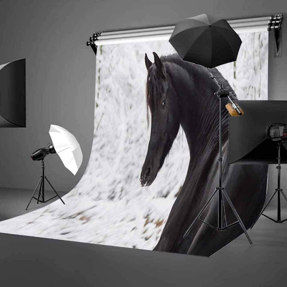 Black Friesian Sport Horse Portrait on a Snowy Winter Background Novelty Picture Background for Child Baby Shower Photo Vinyl Studio Prop Photobooth Photoshoot 10x12 FT Photography Backdrop