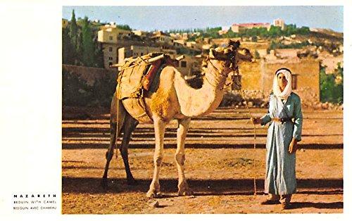 (Nazareth Beduin with Camel Israel)