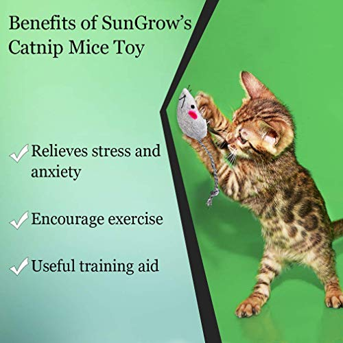 SunGrow Cat Toy (10 pcs) - Boosts Natural Hunting, Pouncing Instinct - Interactive, Durable, Safe to Chew - Promotes Agility, Coordination - Fun for Hours