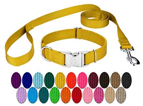Country Brook Design | Premium Nylon Dog Collar and Leash - Gold - Small (Lead Sets Small Collar And Dog)