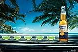 "Corona Beer Lime Line Up Metal Poster Tin Plate Sign 8""x12"""