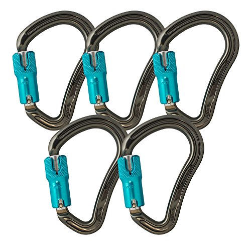Fusion Climb Techno Groove Auto Lock High Strength Ergonomic Carabiner  5-Pack by Fusion Climb