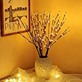 EAMBRITE 3PK 30' Brown Wrapped Lighted Twig Stake with 60LT Warm White LED bulbs for outdoor and indoor use(Vase Excluded)