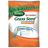 Best Bermuda Grass Seeds - 5M TB/Bermudagrass Seed Review
