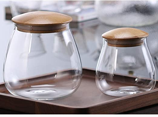400 ml BESTONZON vaso di vetro a forma di fungo con chiusura ermetica coperchio di bamb/ù contenitore per cereali contenitore per alimenti sigillato per biscotti sfusi con chicchi di caff/è