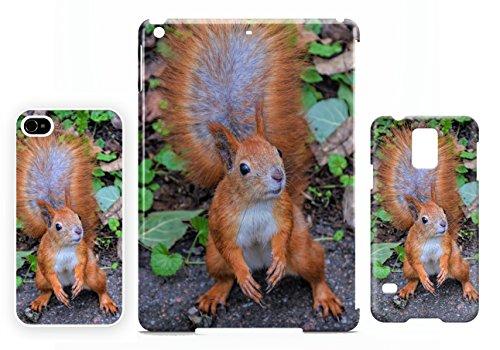 Red Squirrel iPhone 7 cellulaire cas coque de téléphone cas, couverture de téléphone portable