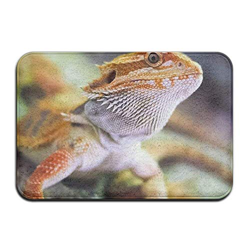 Yamenny Eco-Friendly Floor MatIndoor/Outdoor Doormat Fierce Bearded Dragon  Lizard Front Door Mats Rug Personalized Mat Non-Slip Antibacterial Design