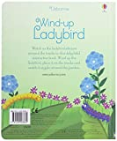 Wind-Up Ladybird (Wind-up Books)