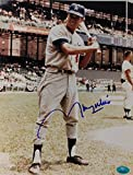 Maury Wills Los Angeles Dodgers Autographed 8x10 MLB Signed Photo 17I