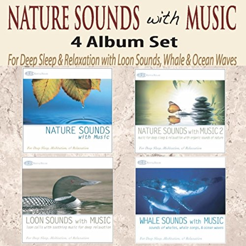 Beluga Whale Lullaby By Akim Bliss On Amazon Music