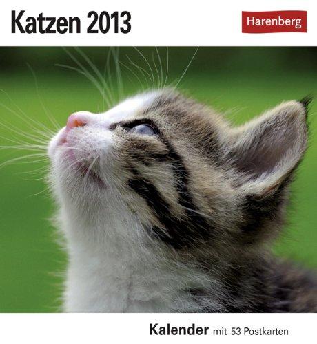 Katzen 2013: Sehnsuchts-Kalender. 53 heraustrennbare Farbpostkarten