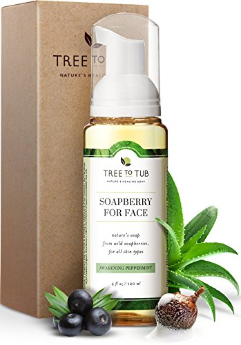 Gentle, Acne Face Wash for Oily Skin. The Only pH 5.5 Balanced Peppermint Foaming Cleanser for Sensitive Skin – Women and Mens Face Wash Made with Organic Wild Soapberries, 4 oz—by Tree To Tub