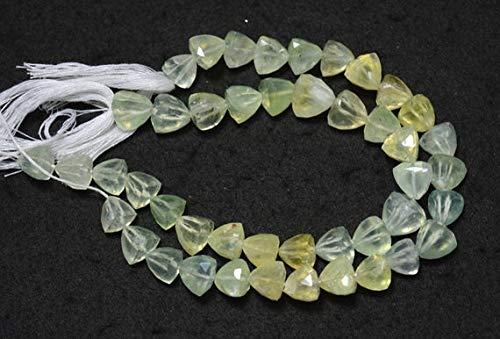 (GemAbyss Beads Gemstone Shaded Prehnite Gemstone Beads, Pyramid Shape Faceted Beads, Prehnite Trillion Cut Briolette Beads, 10mm Beads 8.5 Inches Strand Code-MVG-31557)
