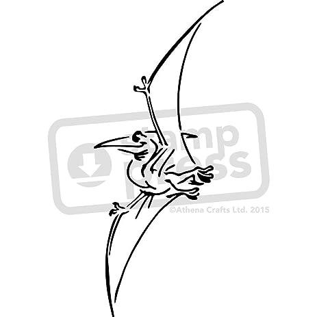 amazon com a5 pterodactyl dinosaur wall stencil template