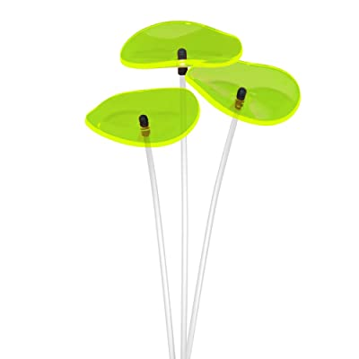 Cazador-del-sol - Suncatcher - Mini Wavy Bouquet - Green : Garden & Outdoor
