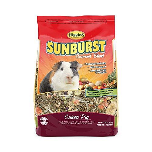 51qI21psDCL - Higgins Sunburst Gourmet Food Mix for Guinea Pigs, 3 Pound