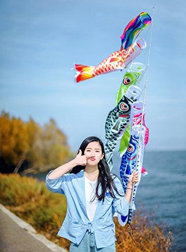 JINSKこいのぼり5色も含めて吹流し入タフタ友禅染め5色鯉のぼり☆お庭&ベランダ用鯉のぼり【新型どこでもスタンドロングポールタイプ付】(150)