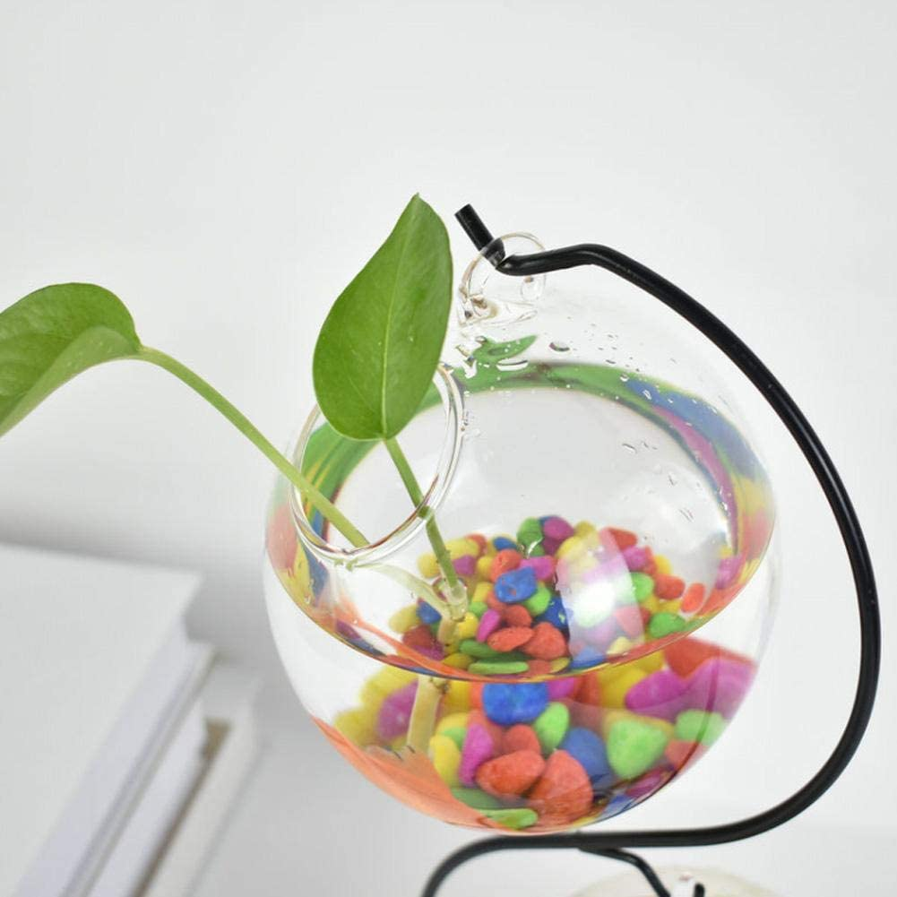 Forwei 2 Pezzi di Vetro Appeso terrario pianta Bonsai Appeso Vaso di Fiori Vaso di Vetro Appeso Aria terrario Kit