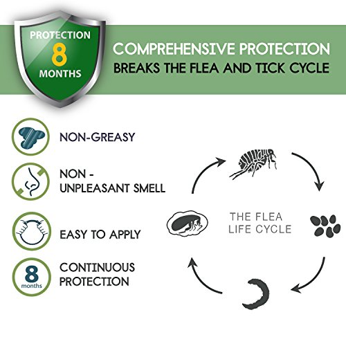 DYEOF Flea Collar for Cats Months Protection - Hypoallergenic, Adjustable Collar Flea Tick