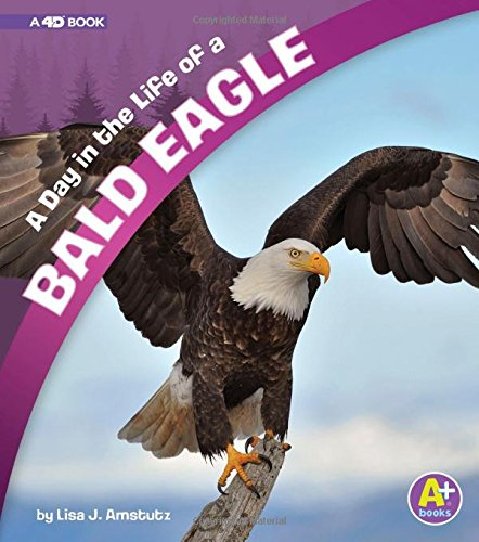 Egg Babies Bald Eagle - A Day in the Life of a Bald Eagle: A 4D Book