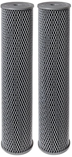 Pentek NCP-20BB Pleated Carbon-Impregnated Polyester Filter Cartridge, 20'' x 4-1/2'', 10 Microns (Pack of 2) by Pentek