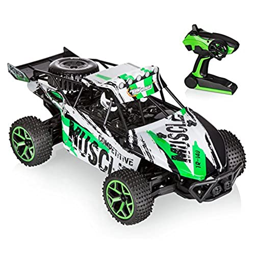 remote control monster truck. Black Bedroom Furniture Sets. Home Design Ideas