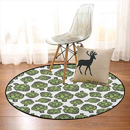 Artichoke Children's Bedroom Carpet Detailed Drawing of Super Foods Fresh Vitamin Sources Natural Nutrition Source Soft Fluffy D35.4 Inch Forest Green