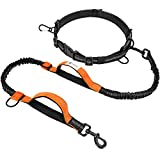 Hands Free Dog Leash F-color Reflective Running Dog Leash with Double Padded Handles