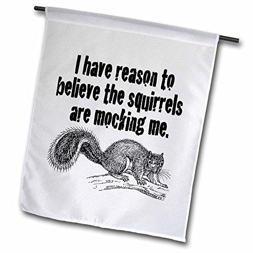 3dRose fl 171998 1 Squirrels Squirrel Whisperer
