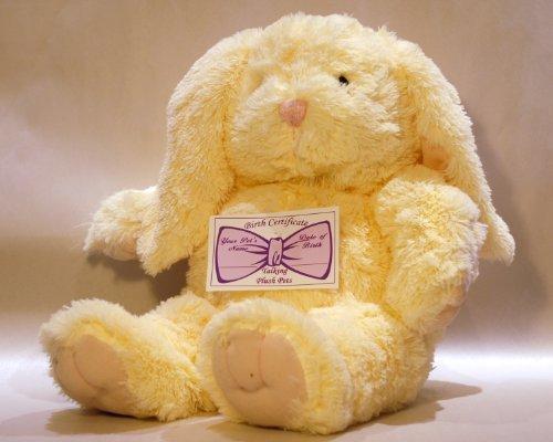 Bunny Kit With Sound (Recordable Stuffed Animal Kit - 8