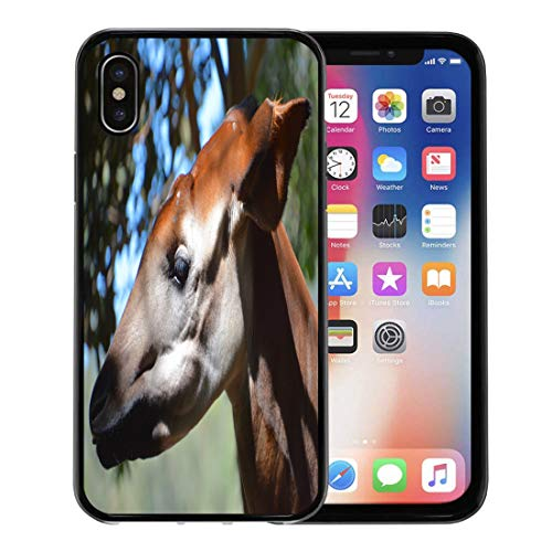 Semtomn Phone Case for iPhone Xs case,Okapi Okapia Johnstoni Also Known As The Forest Giraffe Zebra is Artiodactyl Mammal Native to Northeast for iPhone X Case,Rubber Border Protective Case,Black