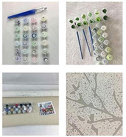 Painting by numbers Cuadro Pintura sobre lienzo Pintura al /óleo digital DIY por kits de n/úmeros Decor del hogar Artesan/ía Regalos Paisaje,Enmarcado,40X50cm