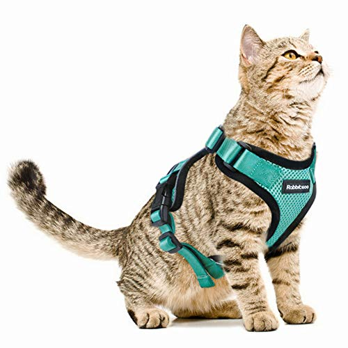 Rabbitgoo Cat Harness Escape Proof Small Dog Vest Harnesses, Adjustable Soft Mesh Kitty Harness for All Weather Walking, Padded Vest for Small Pets Puppies Kittens Rabbits
