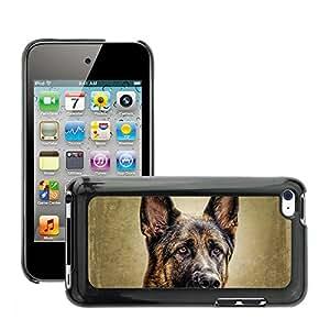 Etui Housse Coque de Protection Cover Rigide pour // M00134539 La cara del perro Animal alemán // Apple ipod Touch 4 4G 4th
