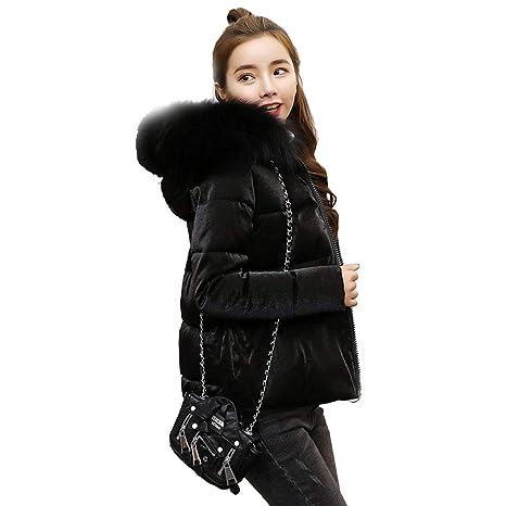 Abrigos Chaqueta Abajo Nueva versión Coreana Acolchado Suelto Chaqueta de algodón Salvaje de Moda de Invierno