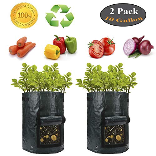 LLOP Plant Grow Bags 10 Gallons Breathable Material with Drainage Holes Handles for Potato Carrot Onion Patio Vegies(2 Packs/Dark Green)