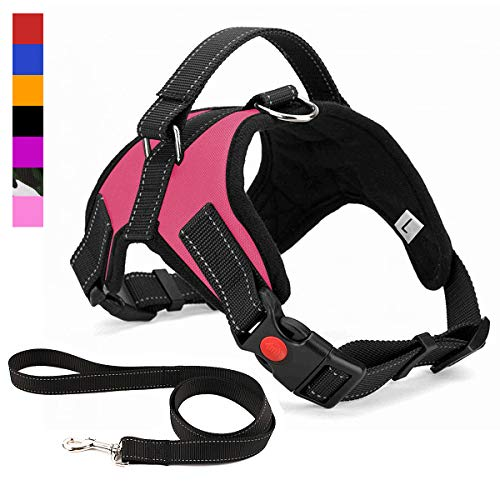 Musonic No Pull Dog Harness, Breathable Adjustable Comfort, Free Leash Included, for Small Medium Large Dog, Best for Training Walking Pink