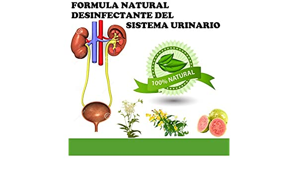 Amazon.com: RENACALM FORMULA NATURAL DESINFECTANTE DEL SISTEMA URINARIO: Health & Personal Care